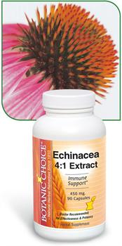 Echinacea Herbal Extract Benefits Healthy Immune System