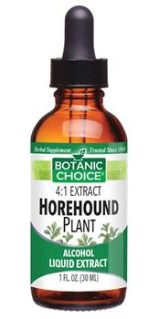 Horehound Plant Liquid Herbal Extract benefits respiratory system health